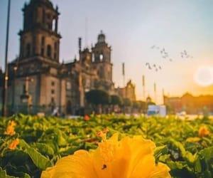 cdmx, centro histórico, and zócalo image