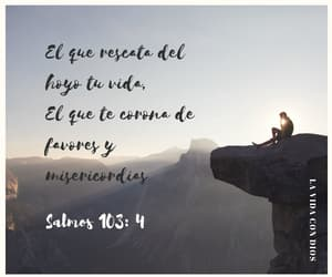 bible, quotes, and tristeza image