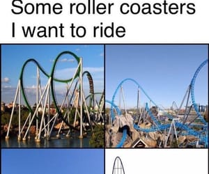 funny, meme, and roller coasters image