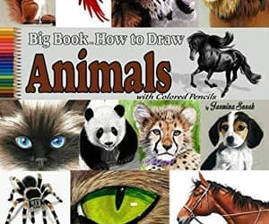 animals, bugs, and drawing image
