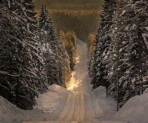 forest, road, and mountain image