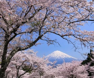 blue, japan, and mountain image