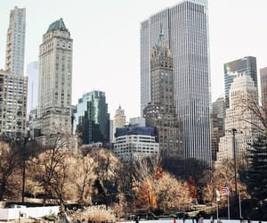 building, Central Park, and nyc image