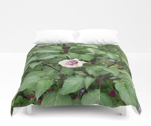 bed, bedroom, and duvet image
