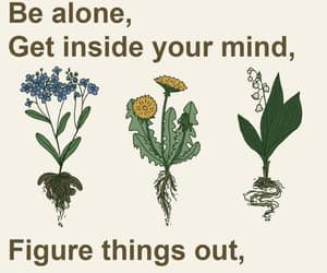 alone, mind, and quotes image