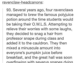 gryffindor, harry potter, and hermione granger image