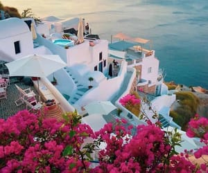travel, Greece, and flowers image
