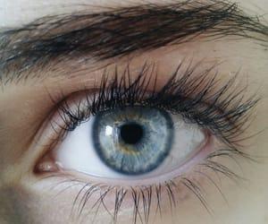 blue, eyelashes, and eye image