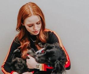 actress, dog, and tv show image