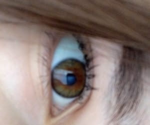 brown eye, eye, and girl eye image