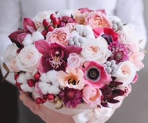 beauty, fashion, and floral image