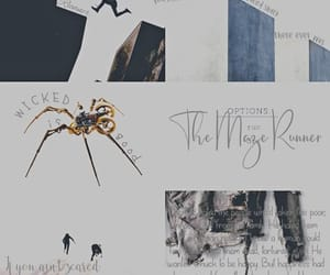 aesthetic, movies, and the maze runner image
