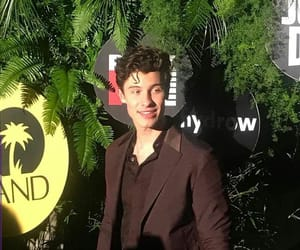 grammys, Hot, and shawn mendes image