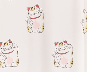 lucky cat image
