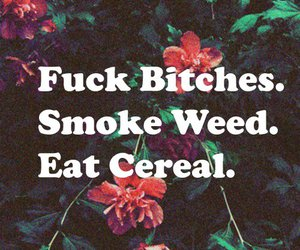 backround, weed, and bitches image
