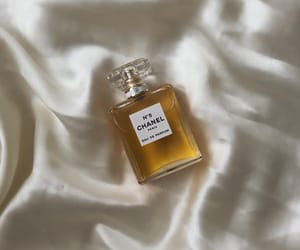 perfume, chanel, and fashion image