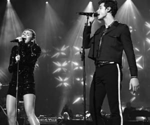 beauty, shawn mendes, and miley cyrus image
