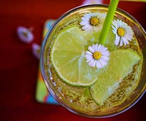 citron, drink, and Fleurs image