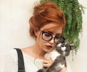 aesthetic, cats, and eyeglasses image