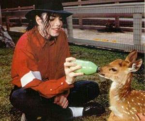 michael jackson, mj, and animal image