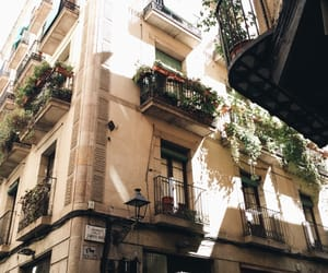 city, flowers, and house image