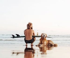 beach and dog image