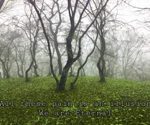 eternal, green, and photography image