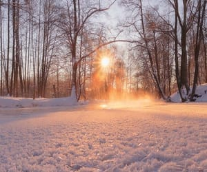 beautiful, nature, and snow image