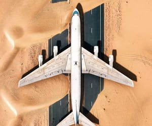 Dubai, nature, and photography image