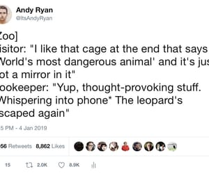 tweet, funny, and leopard image