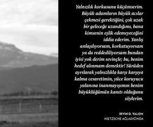 nietzsche, alıntı, and türkçe sözler image