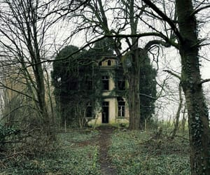 abandoned, house, and ivy image