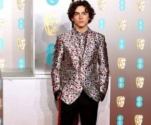 man, moda, and alfombra roja image