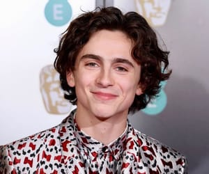 timothee chalamet, bafta, and beautiful boy image