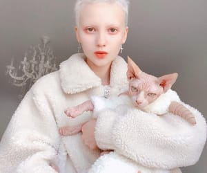 aesthetics, doll, and model image