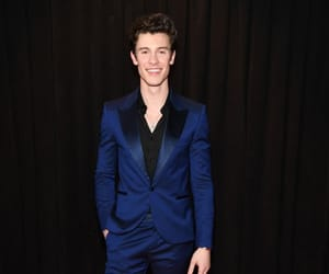 shawn mendes, grammys, and red carpet image