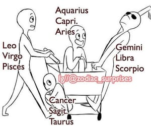 funny and zodiac signs image