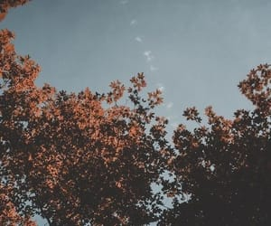 autumn, sky, and wallpaper image