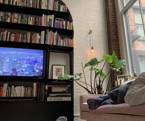 apartment, book shelf, and books image