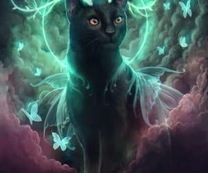 beautiful, cat, and fantastic image