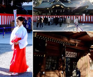 travel, 拝殿, and 東京都 image