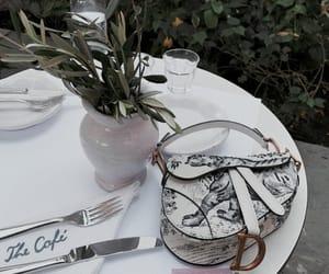 bag, plants, and purse image