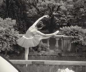 ballet, dance, and trees image