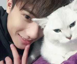 cat, idol producer 2, and 李振宁 image