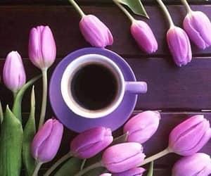 blumen, Kaffee, and tasse image