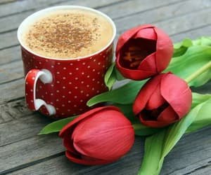 blumen, Kaffee, and tassen image