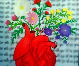 flowers, heart, and red image