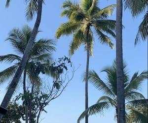 Maldives, vacation, and view image