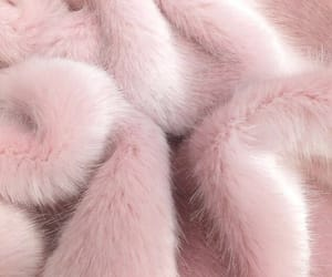 background, fur, and pinky image