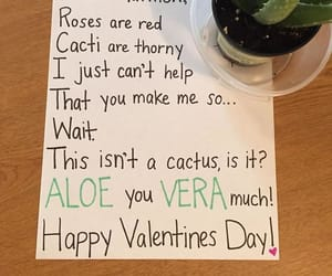funny, valentine, and cactus image